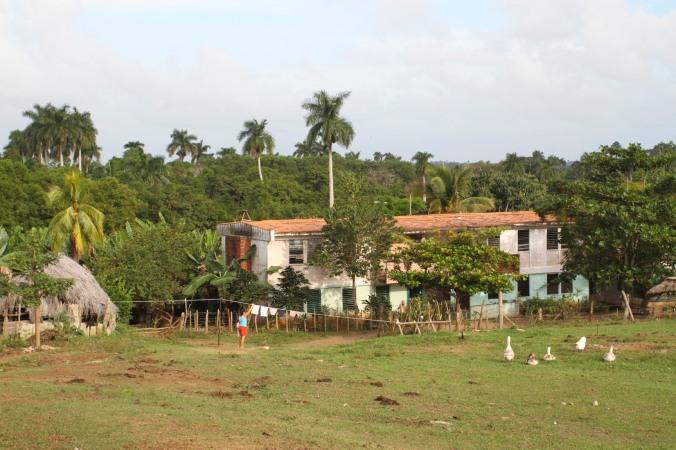 Finca la Guabina, Cuba