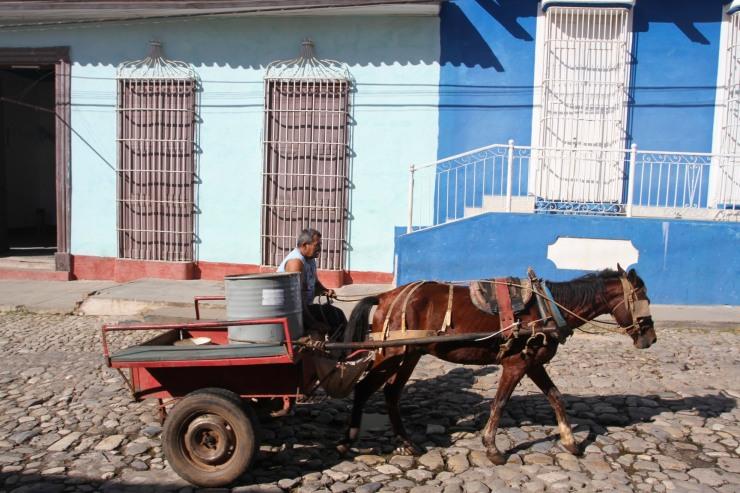 Horse and cart, Trinidad, Cuba