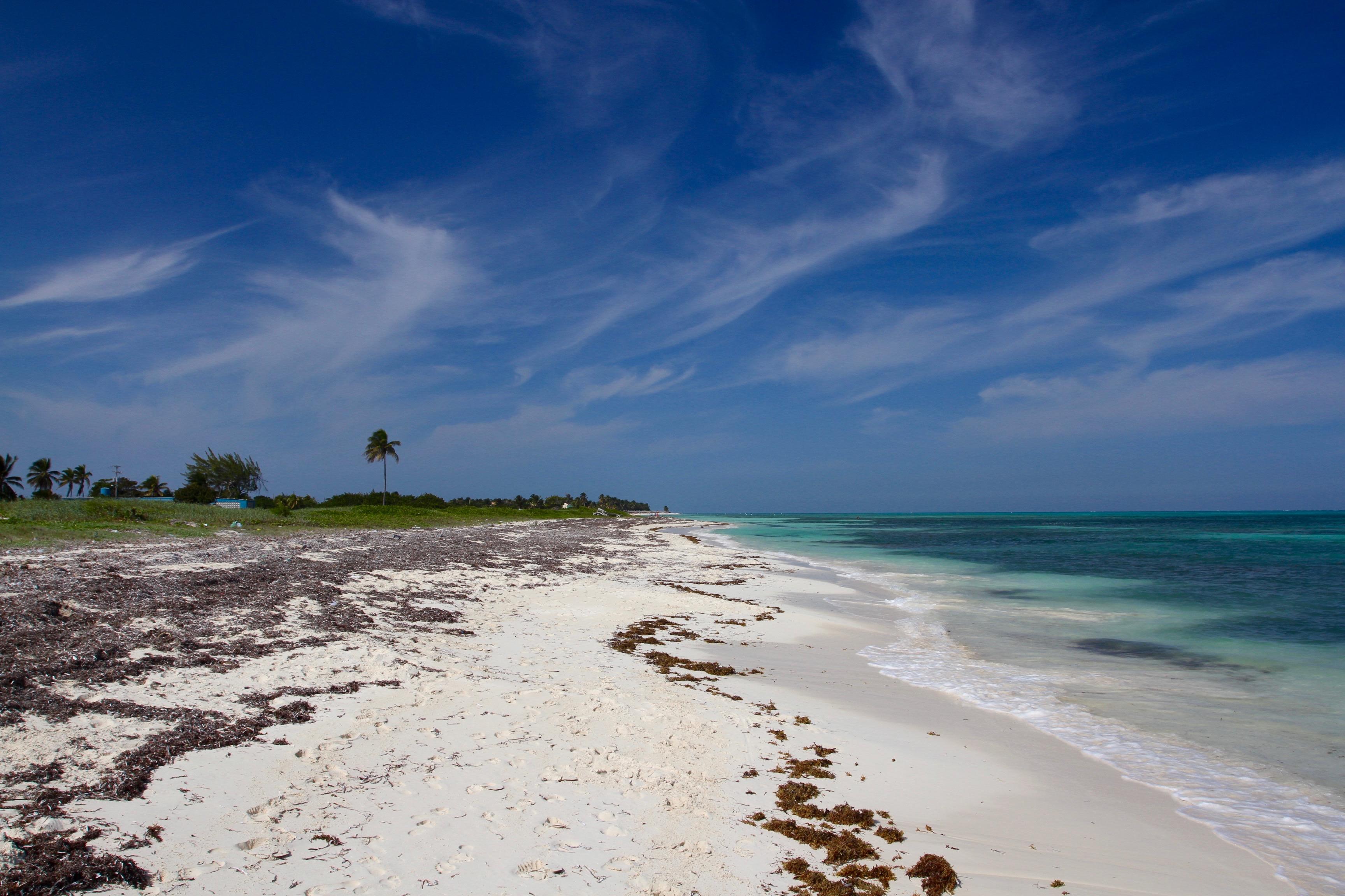Hotels In Playa De Carmen