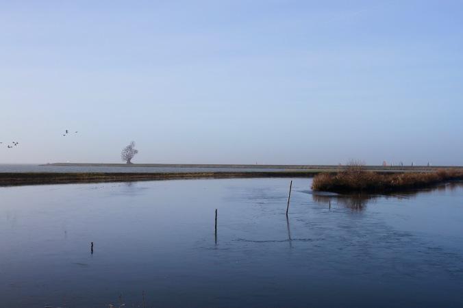De hurkende man, Anthony Gormley's 'Exposure', Leylstad, Netherlands