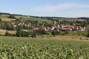 Marne Valley Champagne Route, Champagne, France