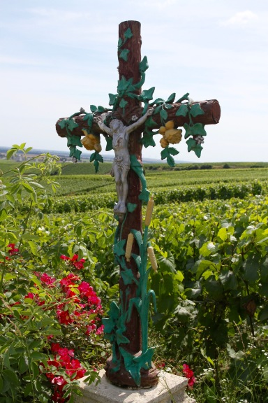 Mesnil-sur-Oger, Côte des Blancs Champagne Route, France