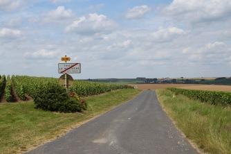 Côte des Blancs Champagne Route, France