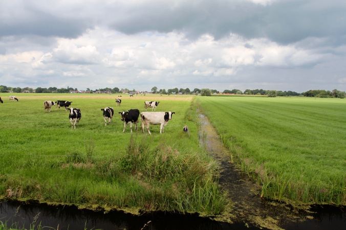 Dutch countryside near Giethoorn, Netherlands