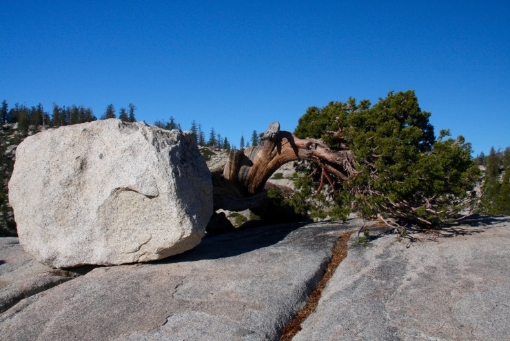 Boulders at Olmsted Point, Yosemite National Park, California, United States