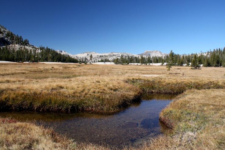 Meadows at Catherdal Lakes, Yosemite, California, United States