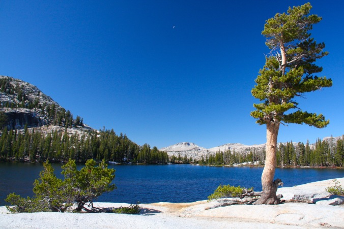 Lower Catherdal Lake, Yosemite National Park, California, United States