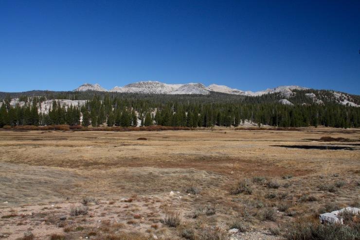 Tuolumne Meadows, Yosemite National Park, California, United States