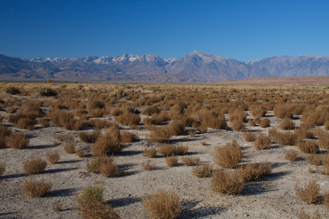 Landscape near Bishop, California, United States