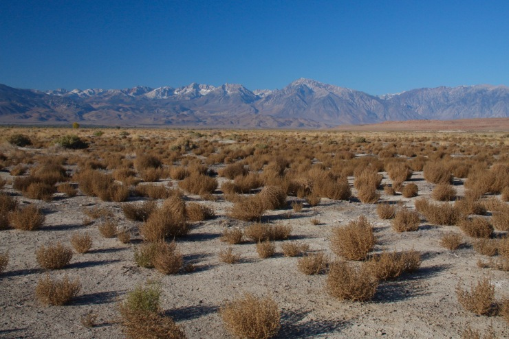Landscape near Bishop, California, United States