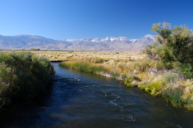 Owens River near Bishop, California, United States