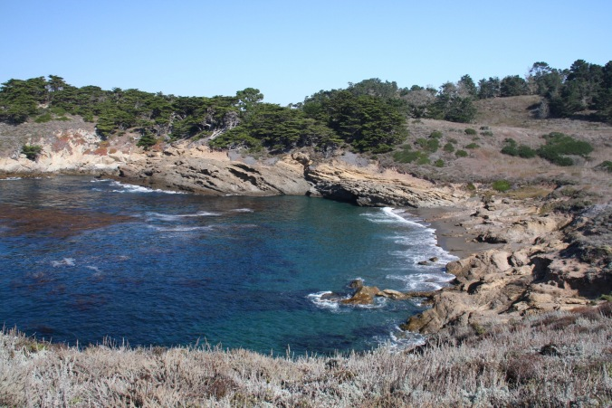 Point Lobos State Natural Reserve, California, United States