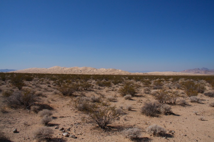 Kelso Dunes, Mojave National Preserve, California, United States