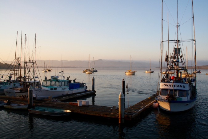 Morro Bay, Pacific Coast, California, United States