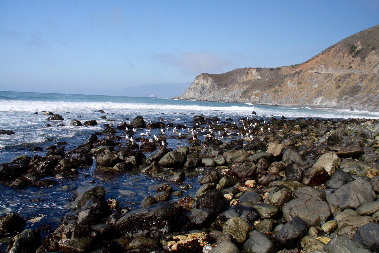 California's rugged Pacific coast, Morro Bay to Big Sur ...
