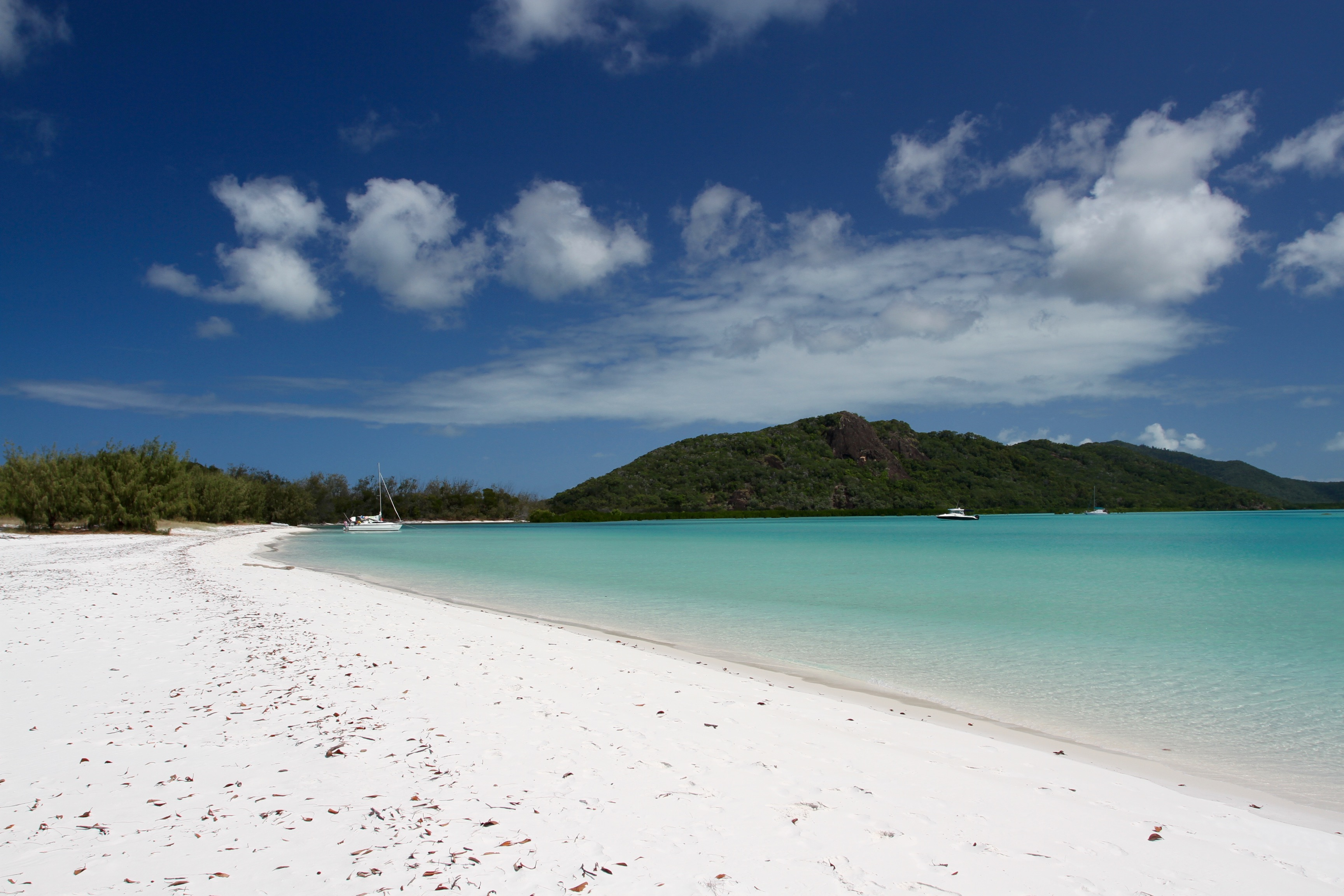 whitehaven beach, scenes from a tropical island