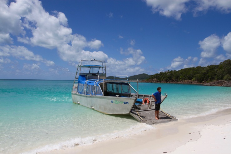 Scamper at Whitehaven Beach, Whitsunday Island, Queensland, Australia