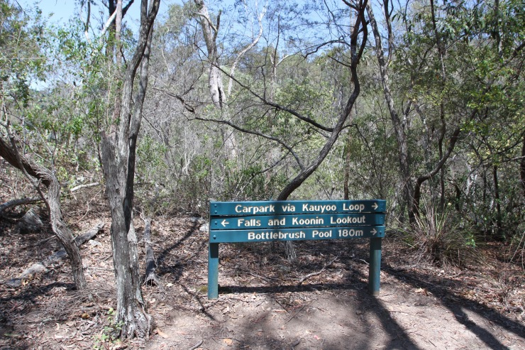 Crows Nest National Park, Queensland, Australia