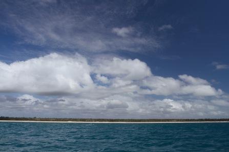 Whale watching, Hervey Bay, Queensland, Australia