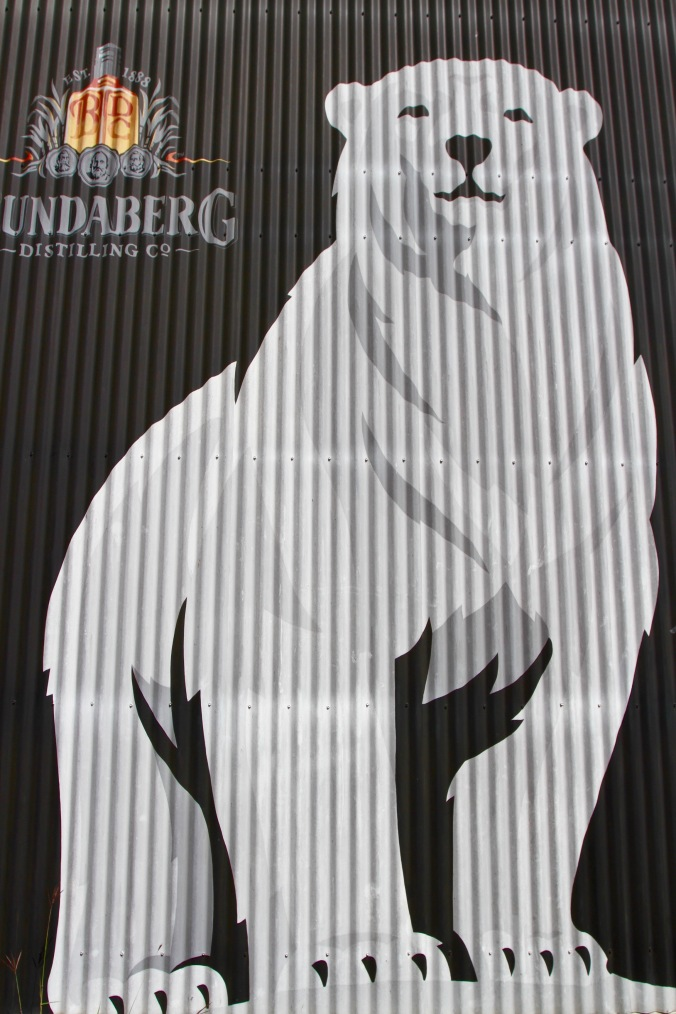 Polar Bear, Bundaberg Rum Distillery, Queensland, Australia