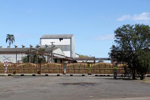 Cane train, Bundaberg Rum Distillery, Queensland, Australia