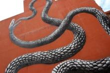 ROA, Street Art, Perth, Western Australia