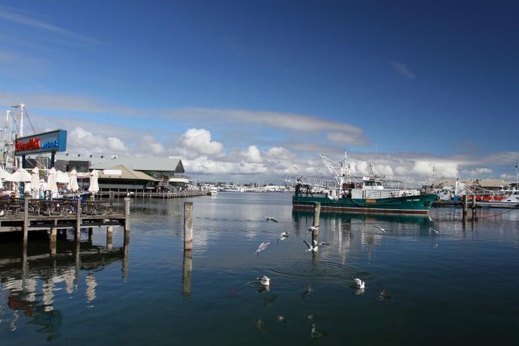 Harbour, Fremantle, Western Australia