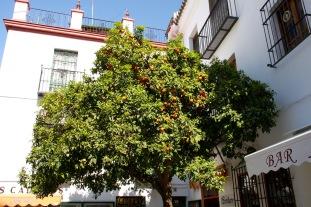 Seville, Spain