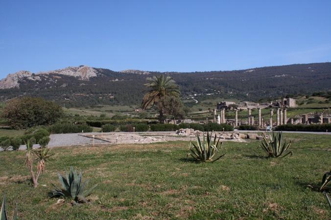 Roman city of Baelo Claudio, Bolonia, Costa de la Luz, Andalusia, Spain