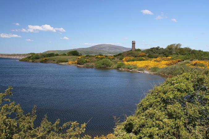 Hodbarrow Nature Reserve, Millom, Cumbria