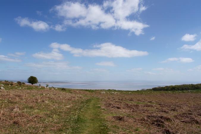 Birkrigg Common, Furness Penninsular, Cumbria