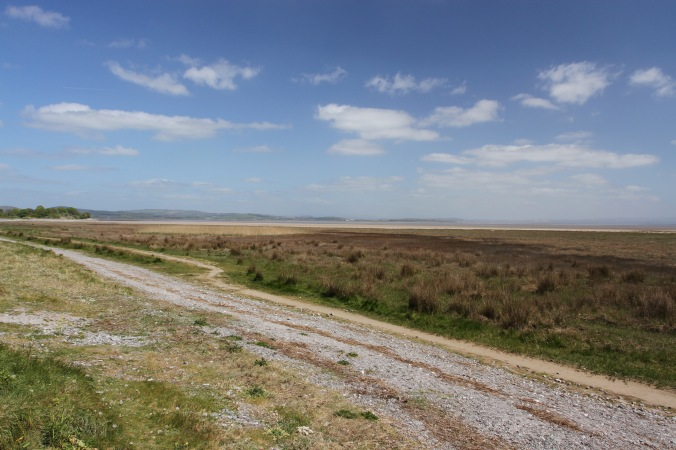 Morecambe Bay, Furness Penninsular, Cumbria