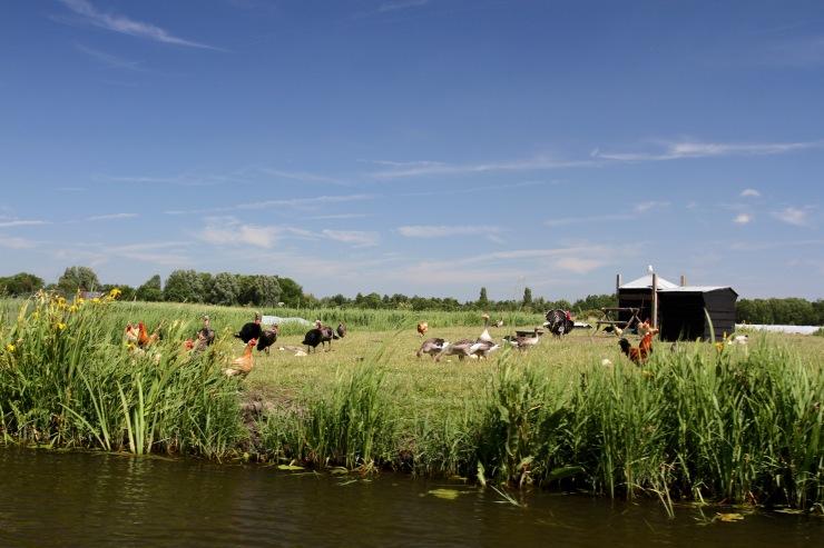 Realm of a Thousand Islands, Broek op Langedijk, Netherlands