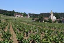 Marsannay la Cote, Route des Grand Crus, Cote de Nuits, Burgundy, France