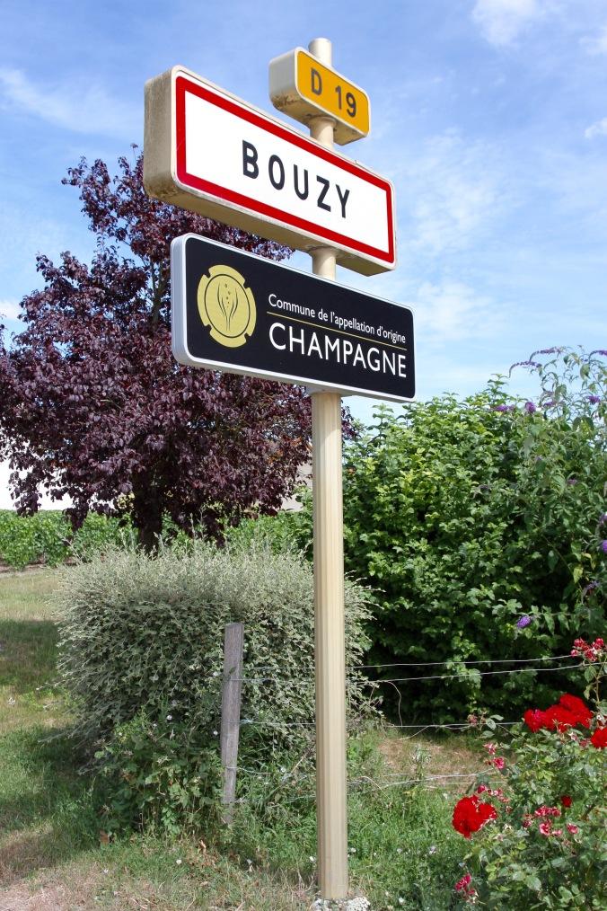 Bouzy, Montagne de Reims Champagne Route, Champagne, France