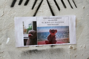 Lost bear, Auxerre, France