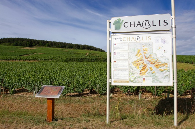 Grand Cru vineyards, Chablis, Burgundy, France