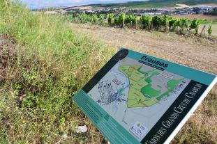 Grand Cru vineyards, Chablis, Burgundy, France