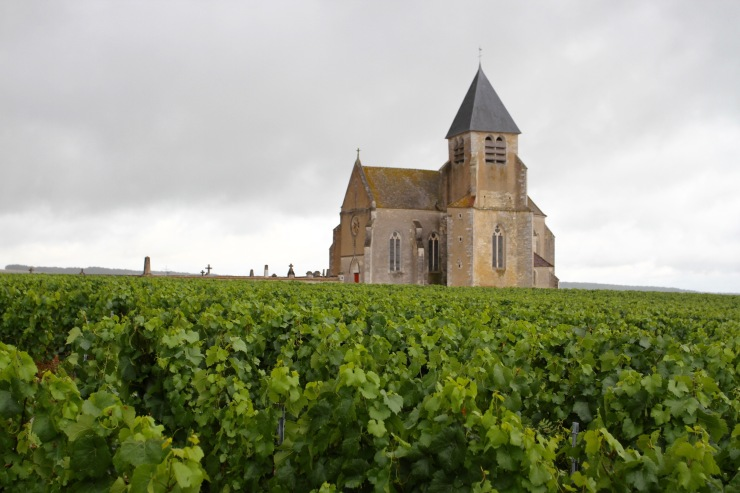 Church in vineyards near Chablis, Burgundy, France