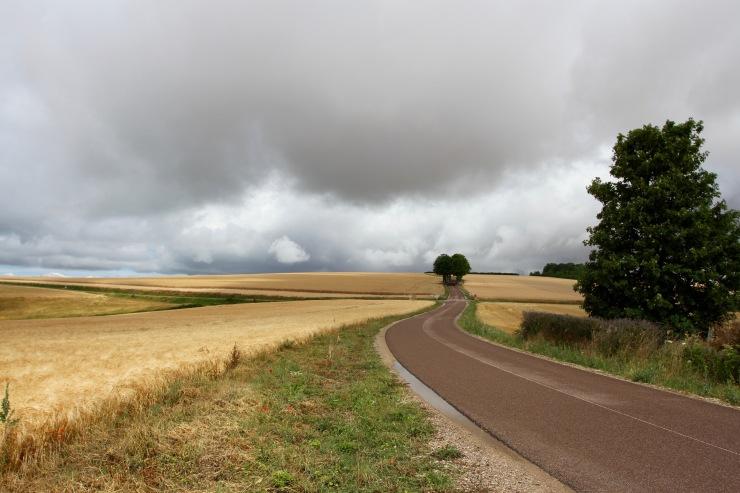Burgundy countryside near Chablis, France
