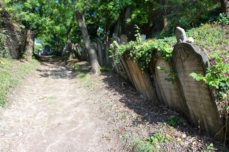 Jewish cemetery, Mikulov, Czech Republic
