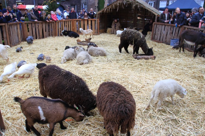 Nativity at Dordrecht Xmas Market, Netherlands