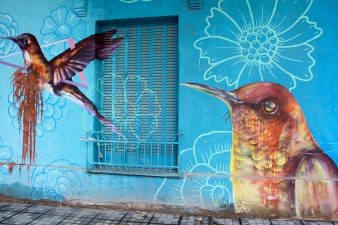 Street art, Mendoza, Argentina