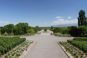 Piedra Negra, Valle de Uco, Mendoza, Argentina
