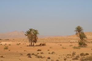 Landscape around Tataouine, Tunisia