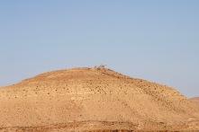 Dinosaurs on a hill, Ksar Guermessa, Tataouine, Tunisia
