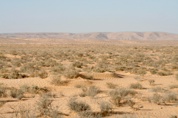 The route to Douz, Tunisia
