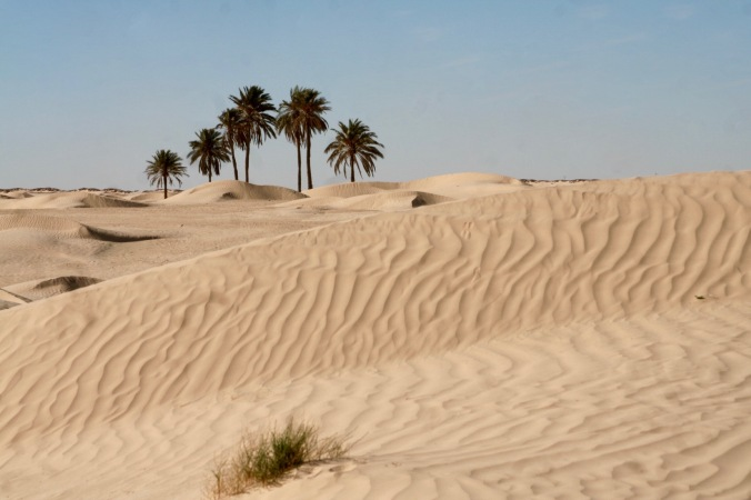 Grand Erg Oriental, Douz, Tunisia