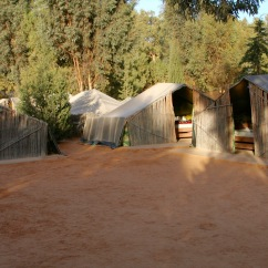 My tent, oasis of Ksar Ghilane, Grand Erg Oriental, Tunisia