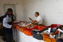 Fish market, Houmt Souk, Djerba, Tunisia